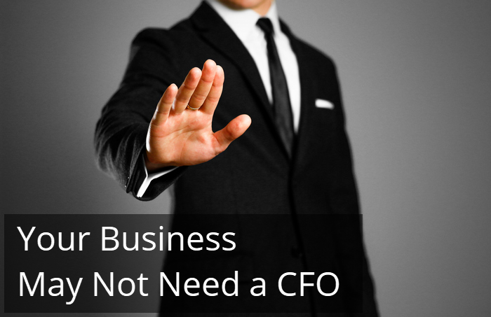 Your Business May Not Need a CFO