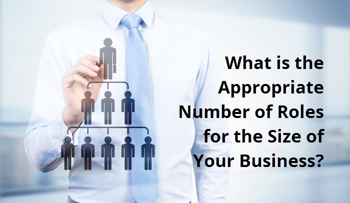 What is the Appropriate Number of Roles for the Size of Your Business?