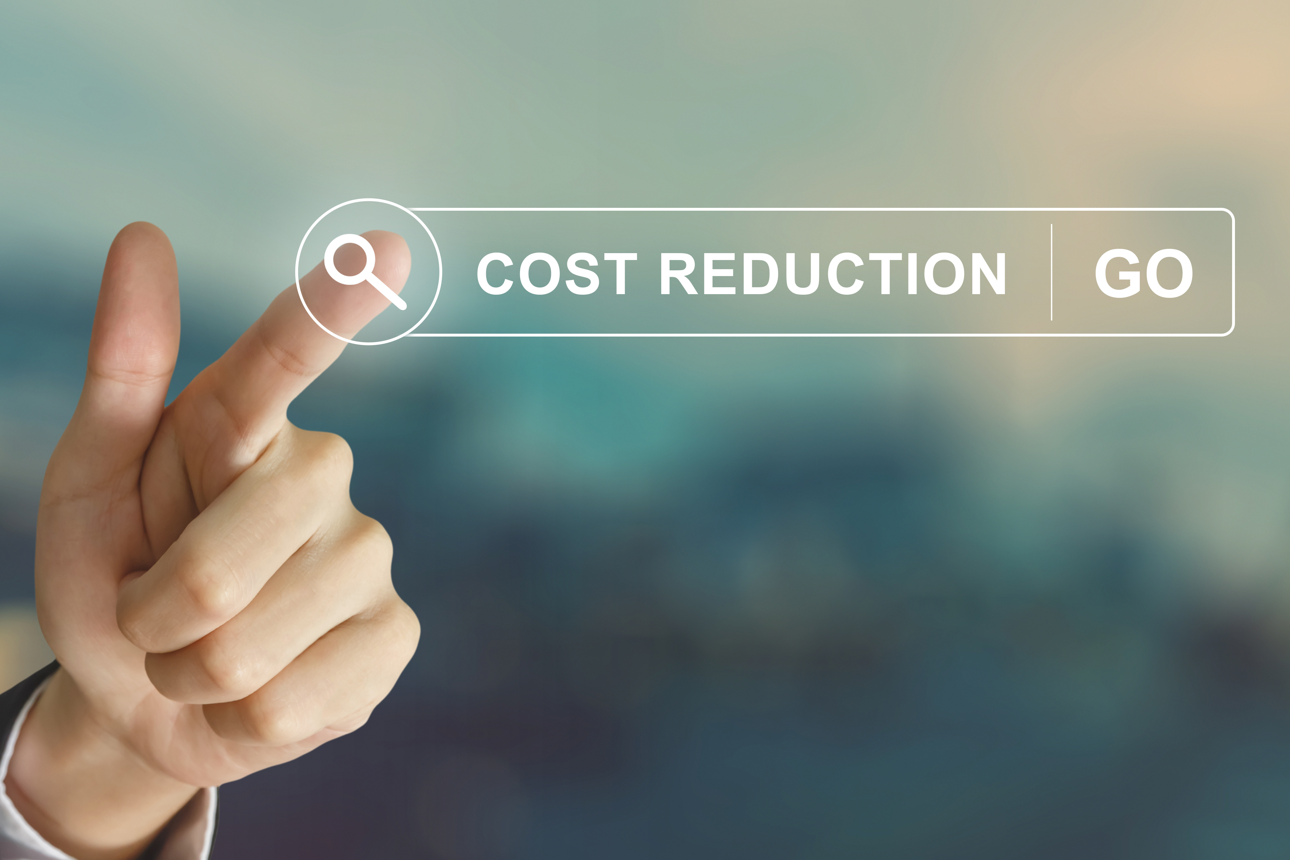 Moving Beyond a Cost Reduction Strategy